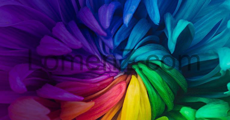 طیف رنگی فوق العاده گسترده در ویدئو پروژکتورهای اپسون